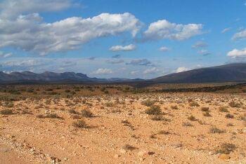 Anysberg Nature Reserve, Karoo, Western Cape,